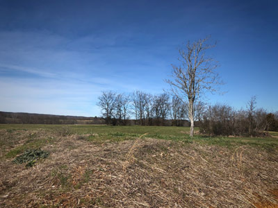 commercial land for sale spring hill tn commercial development spring hill tn